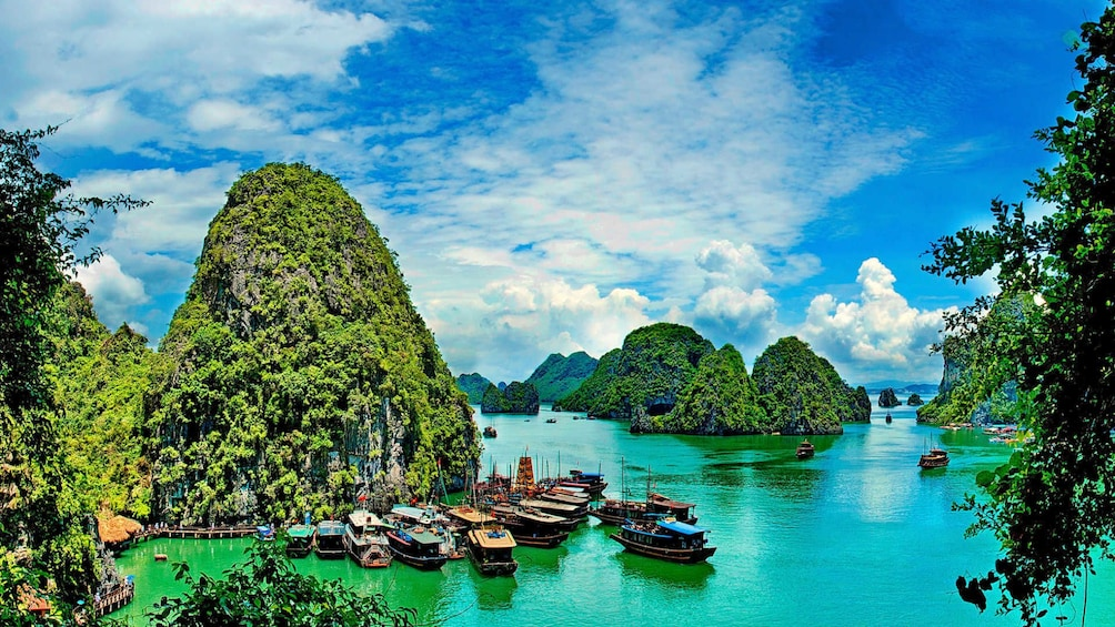 Show item 10 of 10. Many boats docked by an island in Halong Bay on sunny day
