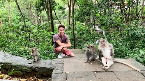 Best of Ubud: Monkey Forest, Temple, Waterfall and more