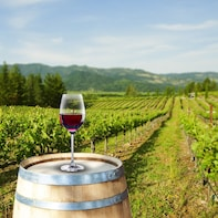 Winetour 2: Trentino Region