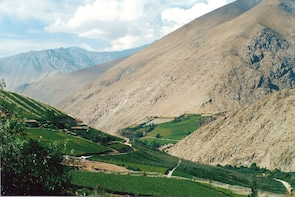 Elqui Valley Small-Group Tour from La Serena