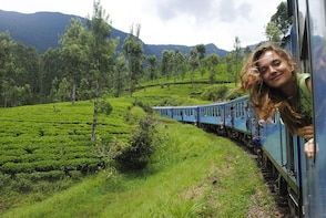 Private Tour to Horton Plains with a Short Train Journey