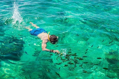 Man snorkeling on Phi Phi Islands