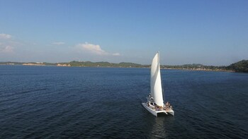 Sail and Whale in East of Sri Lanka