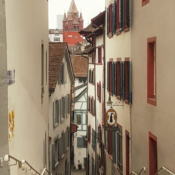 Basel city tour - 4 hours - with private tour guide