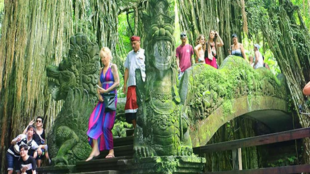 Show item 3 of 9. Full Day Ubud Tour: Culture, Arts show, Waterfall &Rice view