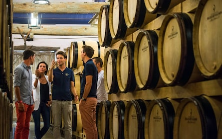 Group touring a winery in Reims