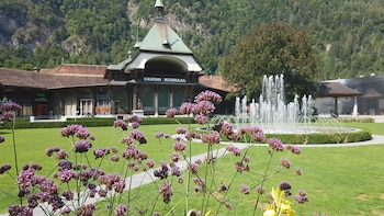 Interlaken & Harder, day tour with private guide from Luzern