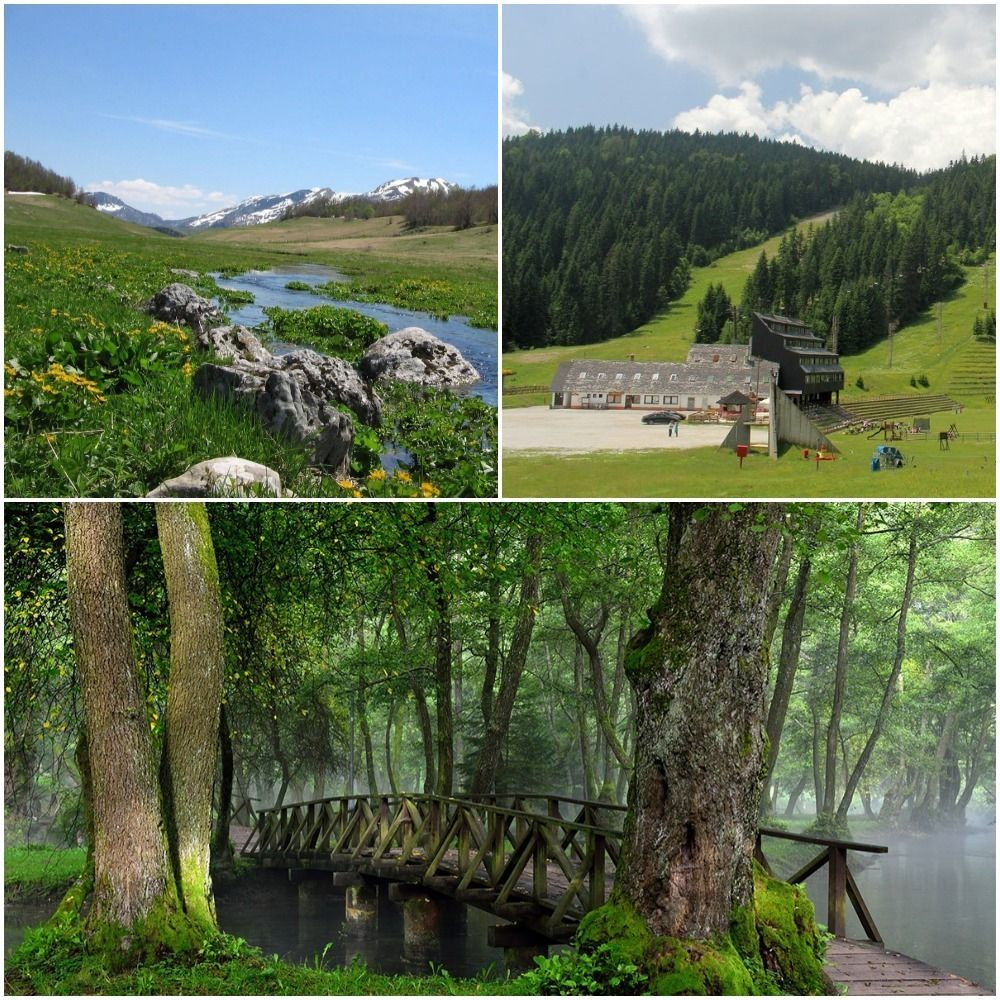 Olympic Mountains and Springs of River Bosnia tour