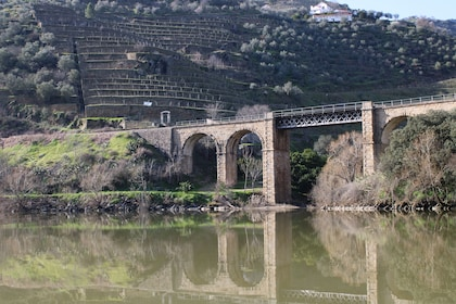 Douro Valley Historical Tour - Full Day - Private