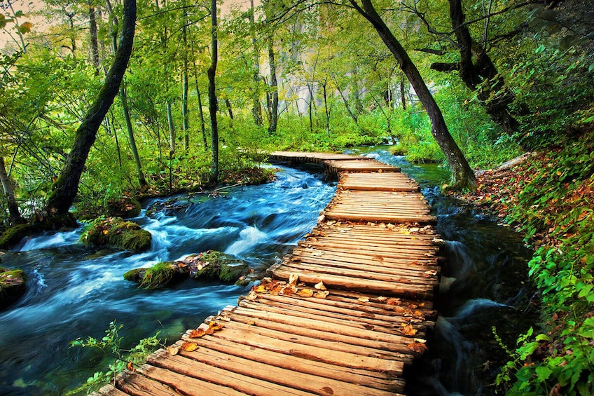 Show item 4 of 5. Private Excursion to National Park Plitvice Lakes