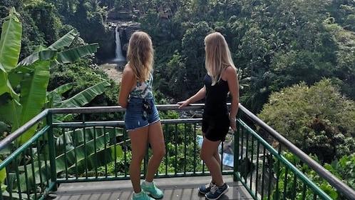 Ubud Waterfall.jpg