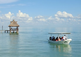 Tour of Terminos Lagoon and Ciudad del Carmen from Campeche
