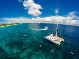Catalina Island Sailing - Altos de Chavon and snorkeling