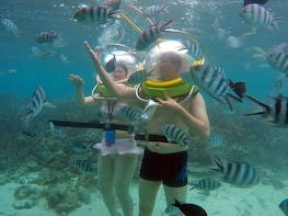 Underseawalk/Blue Safari FD incl priv transfers ex. north