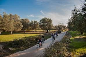 Bike Tour: Lecce and its natural environment