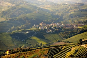 Barolo Wine tour from Turin
