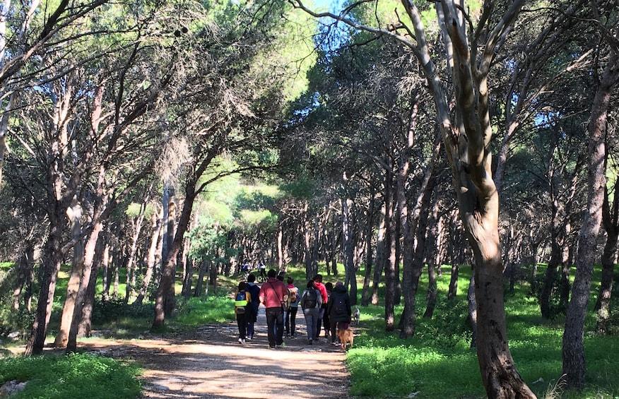 Walking Tour: Natural Park of Porto Selvaggio