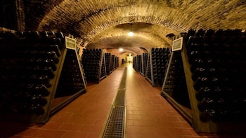 Self wine tour from Milan including 3 wineries