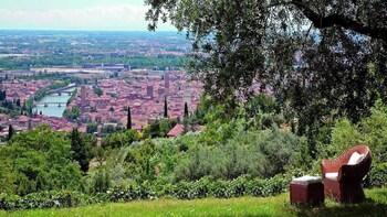 Self half day wine tour of Valpolicella from Verona