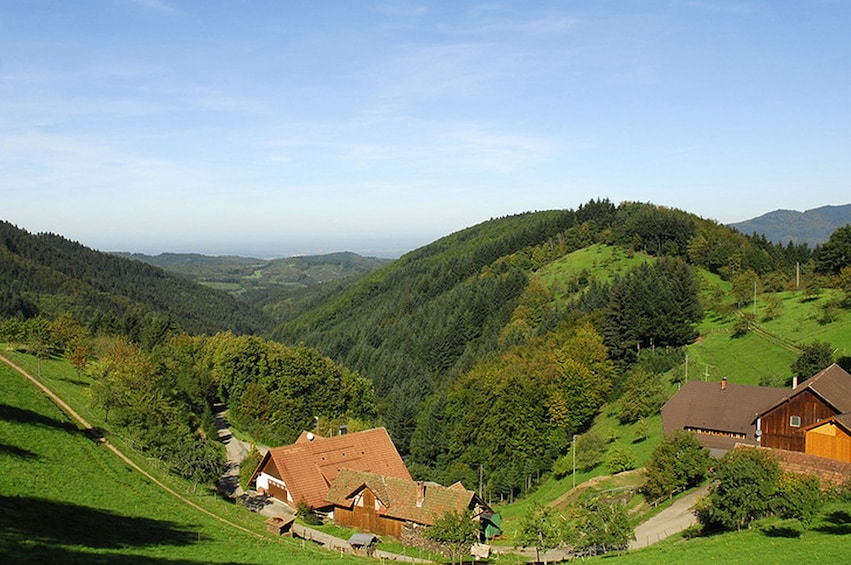 Show item 1 of 2. Panoramic view of Black Forest in Germany