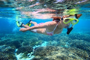 Abrolhos Islands Scenic Flight & Snorkel Adventure