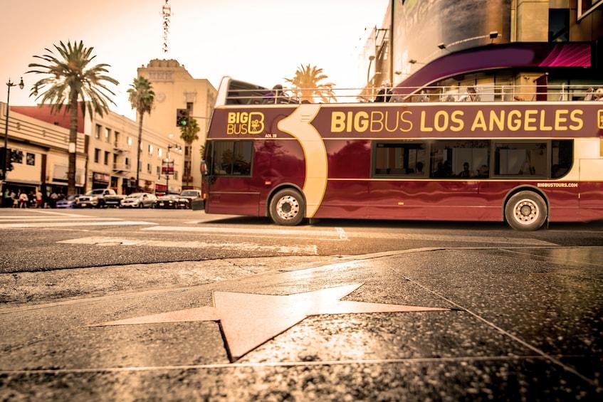 Show item 4 of 10. Big Bus Los Angeles