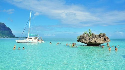 Catamaran Cruise West Coast 1.jpg