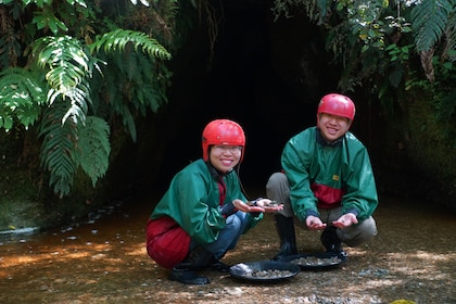 glow-worm-cave-tour-greymouth-gold-hunting.JPG