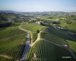 Langhe & Roero Unesco Wine day tour