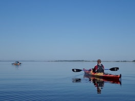 Private Kayak Tour to Nemunas River Delta from Klaipeda