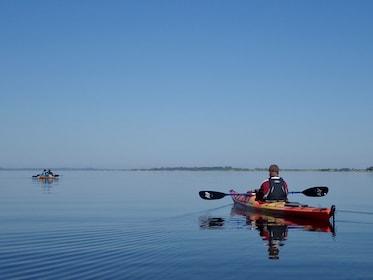 Group kayaking along the Nemunas River Delta