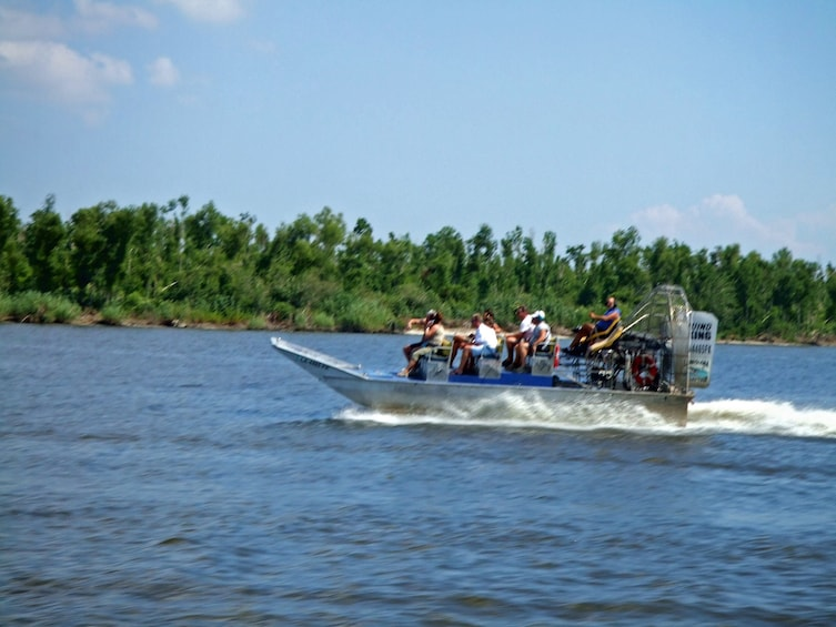 Show item 8 of 8. Airboat tour in Louisiana