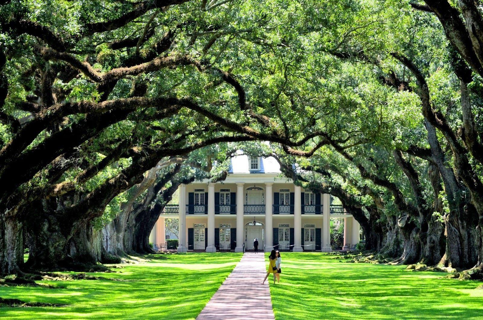 Guided Oak Alley Plantation & 3-Hour City Tour Combo