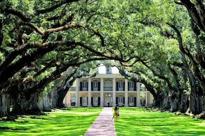Guided Oak Alley Plantation & 3-Hour City Tour Combo