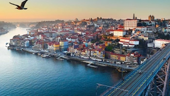 Full Day Guided Private Tour to Porto