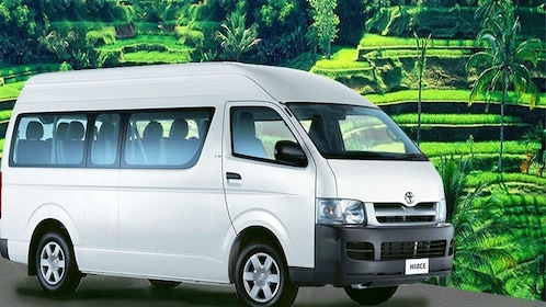 Customizable Bali Tour with 12-Seater Mini Bus and Driver