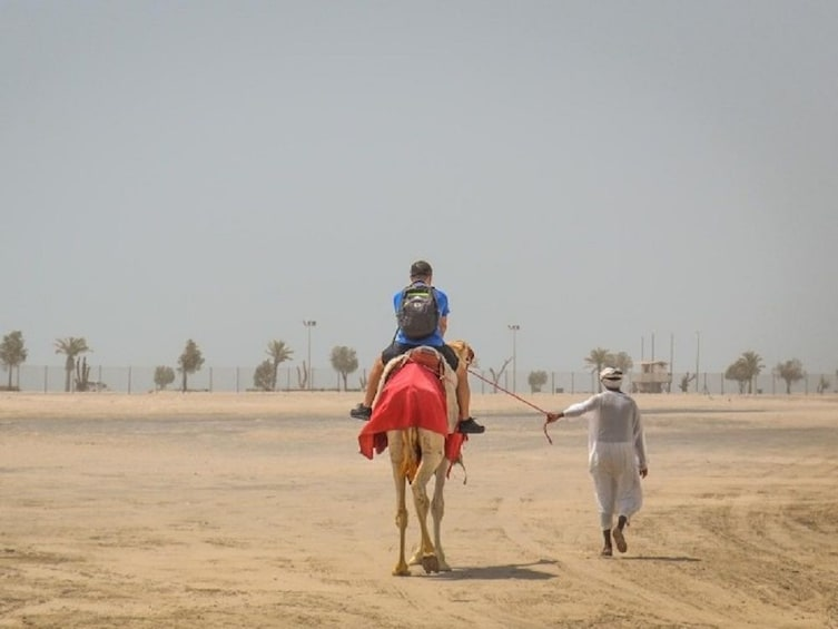 Show item 3 of 3.  Qatar South Coast Tour With Camel Ride