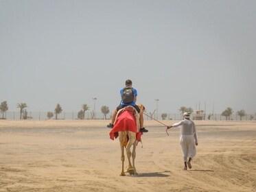 Doha-Camel-Riding.jpg