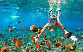 Bali Snorkeling Tour At Blue Lagoon Beach All-Inclusive