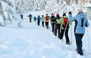1-day Hiking with Snowshoes on Vitosha