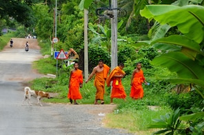 Easy Biking Around Rural Luang Prabang Full Day Tour