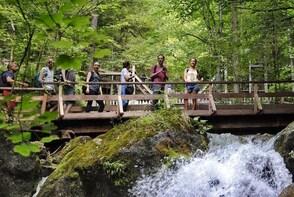 Hiking Myra Waterfalls