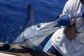 Deep Sea Fishing VIP Yacht Sosua
