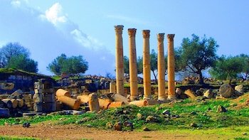 Private Full Day Trip of Umm Qais, and Pella from Amman