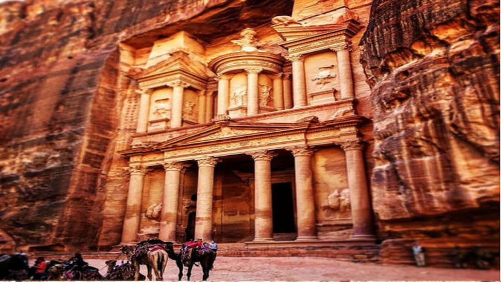 Show item 3 of 3. Private Petra Day Trip Including Dead Sea from Amman