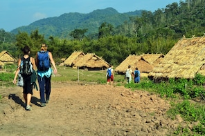 Jungle Trek, Rice Paddies, Hill-tribes and Tad Sae Waterfall