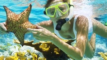 Bali Snorkelling Trip at Blue Lagoon