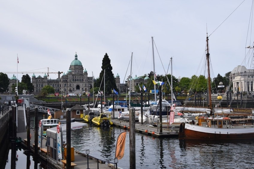 Show item 5 of 10. Hop On Half Day Sightseeing Victoria