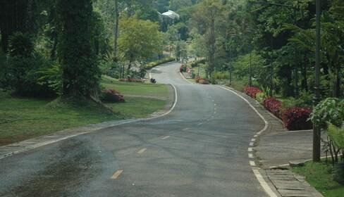 Local road in Mae Hong Son