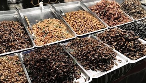 Fried insects at the market in Mae Hong Son